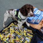 Tobacco Control Alliance Backs Calls to Tackle Illegal Tobacco in Wales