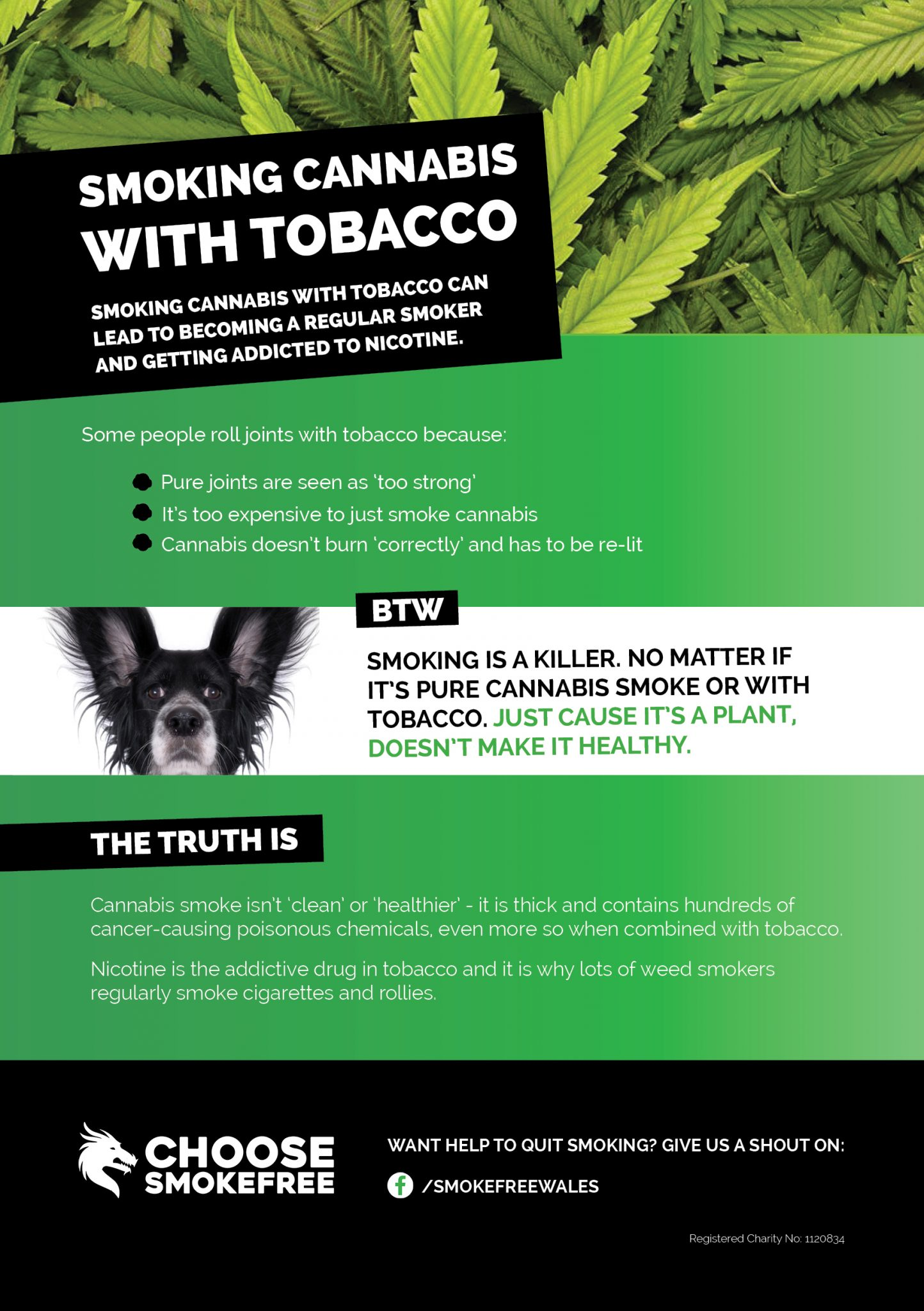Leaflets - Action on Smoking and Health